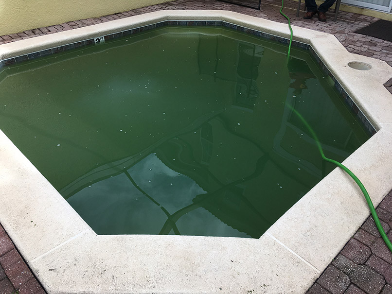 Green Pool before image